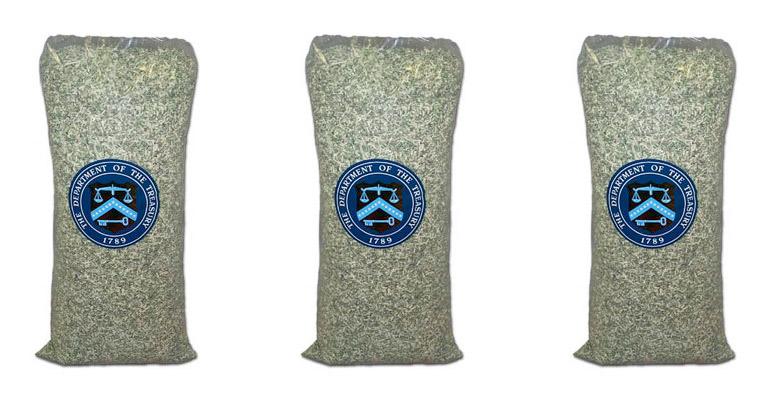 5lb-bag-of-shredded-money